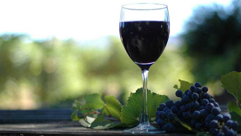 la-rioja-copa-vino