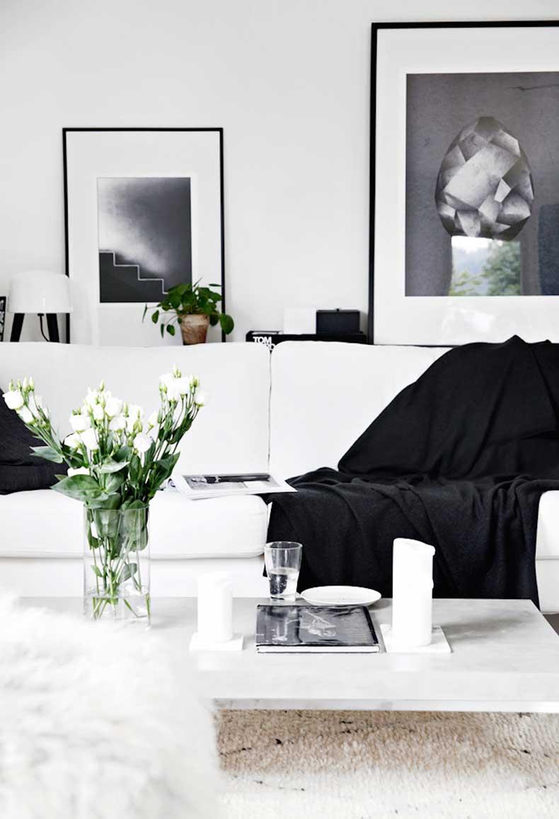 oracle-fox-sunday-sanctuary-black-white-grey-house-plants-monochrome-minimal-interior-7