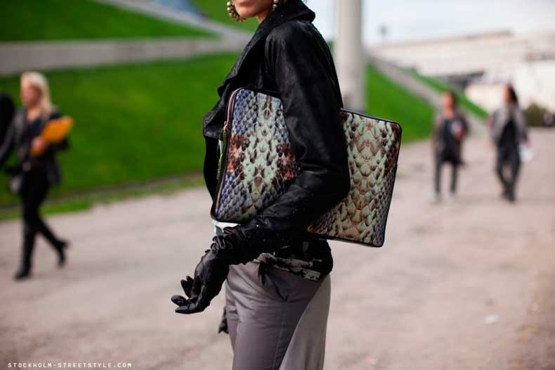 stockholmstreetstyle-snake-clutch-880x586