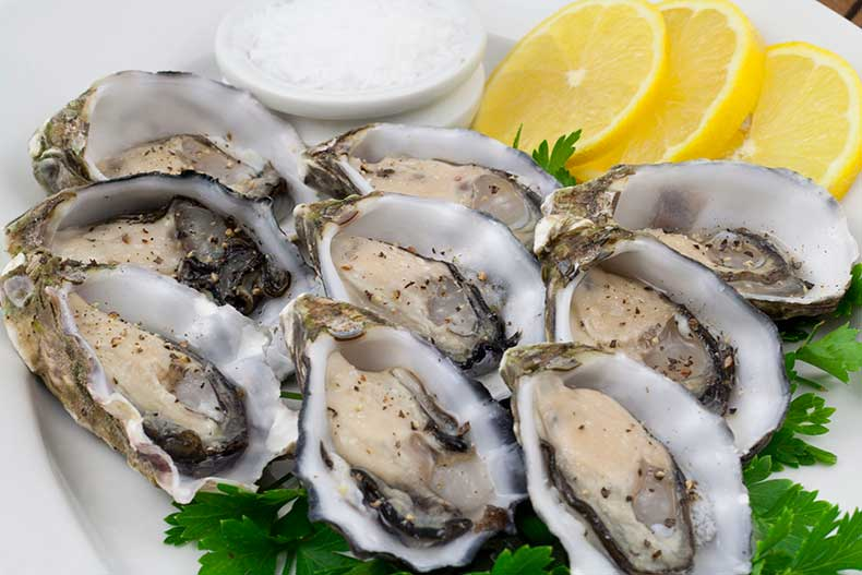 Oysters-Coffin-Bay