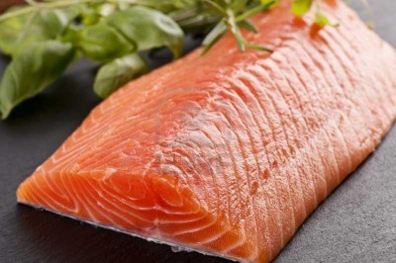 salmon-filets
