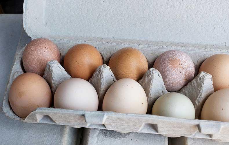 349838249e875c6a_eggs.xxxlarge