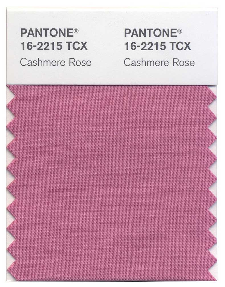 Cashmere-Rose
