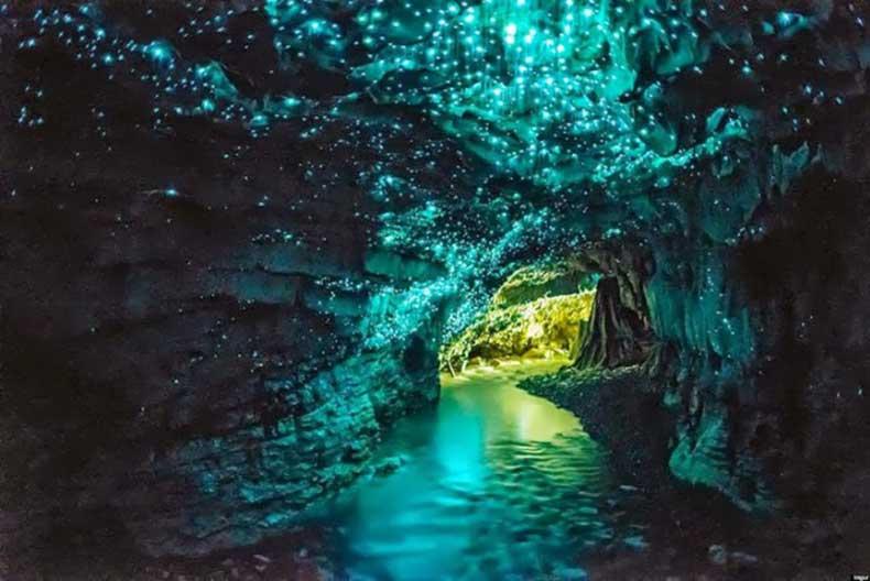 Glow-worm-cave-New-Zealand.jpg1_