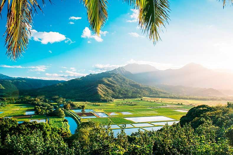 Kauai-luke_shadbolt-travel-nicole_warne-1