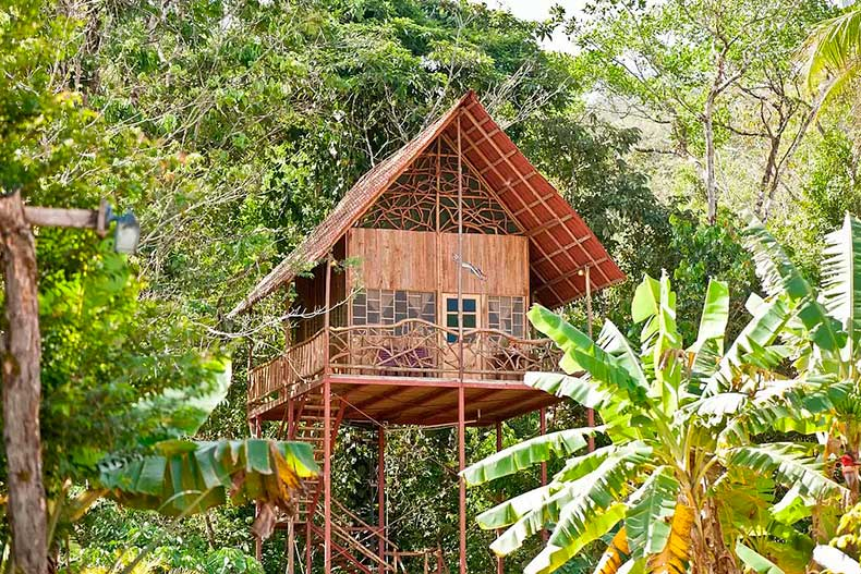 Rainforest-Tree-House-Cooper-Alajuela-Costa-Rica