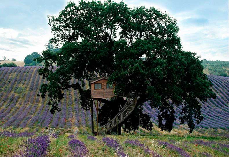 Suite-Bleue-Tree-House-La-Piantata-Italy
