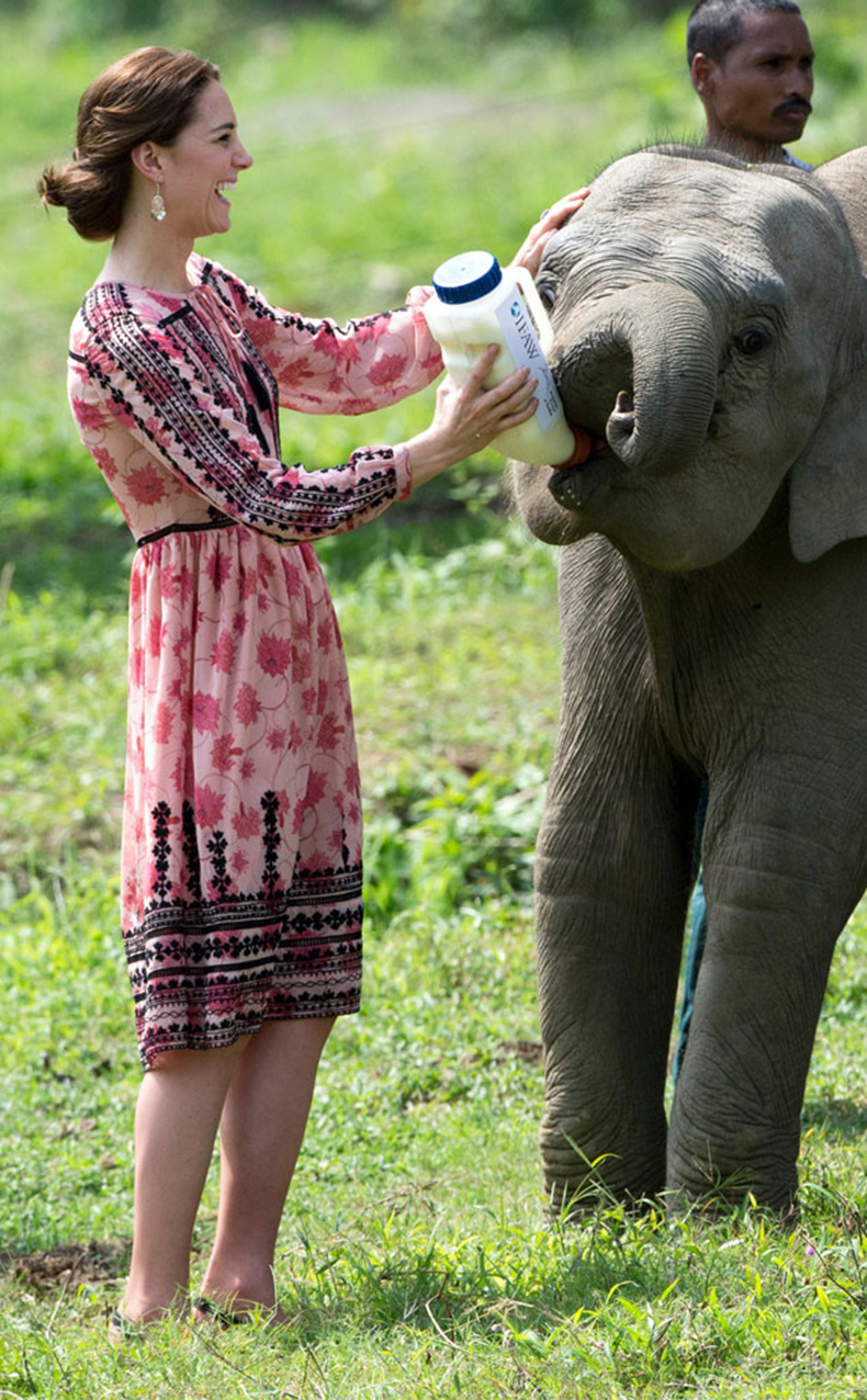 rs_634x1024-160413050129-634.Kate-Middleton-Feeding-Elephant-JT-041316