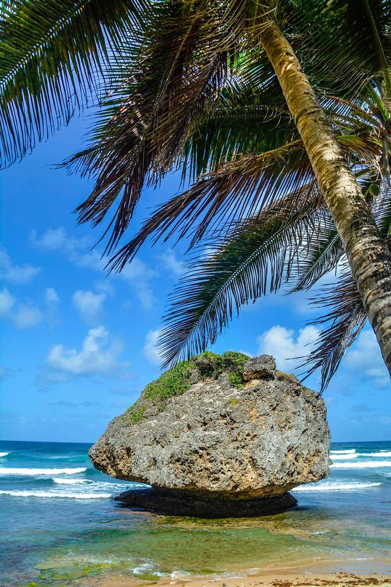 Barbados-14