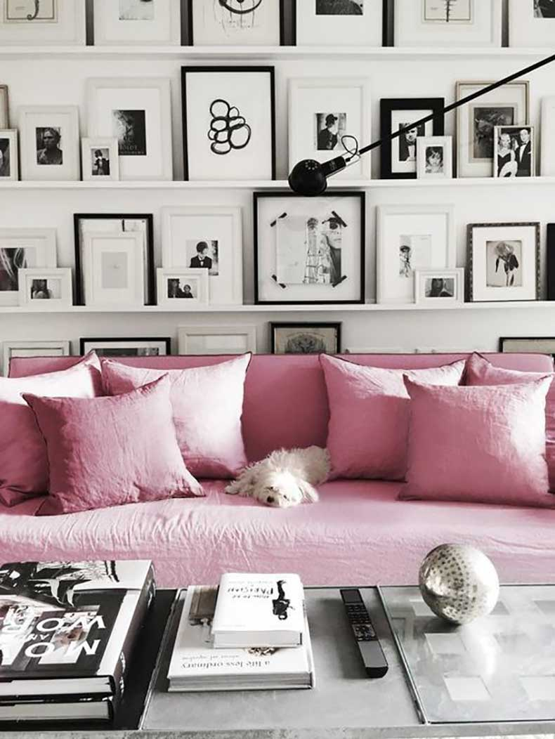 rose-quartza-sofa-with-a-dog