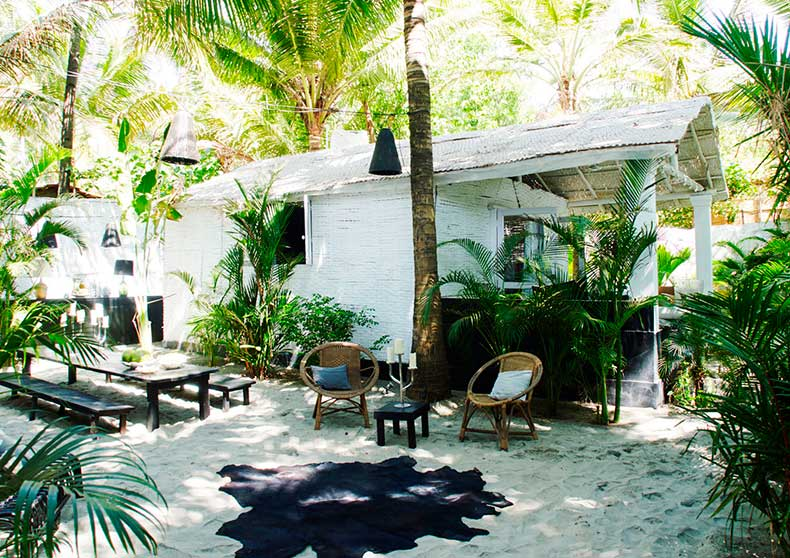 Beach_house_plants
