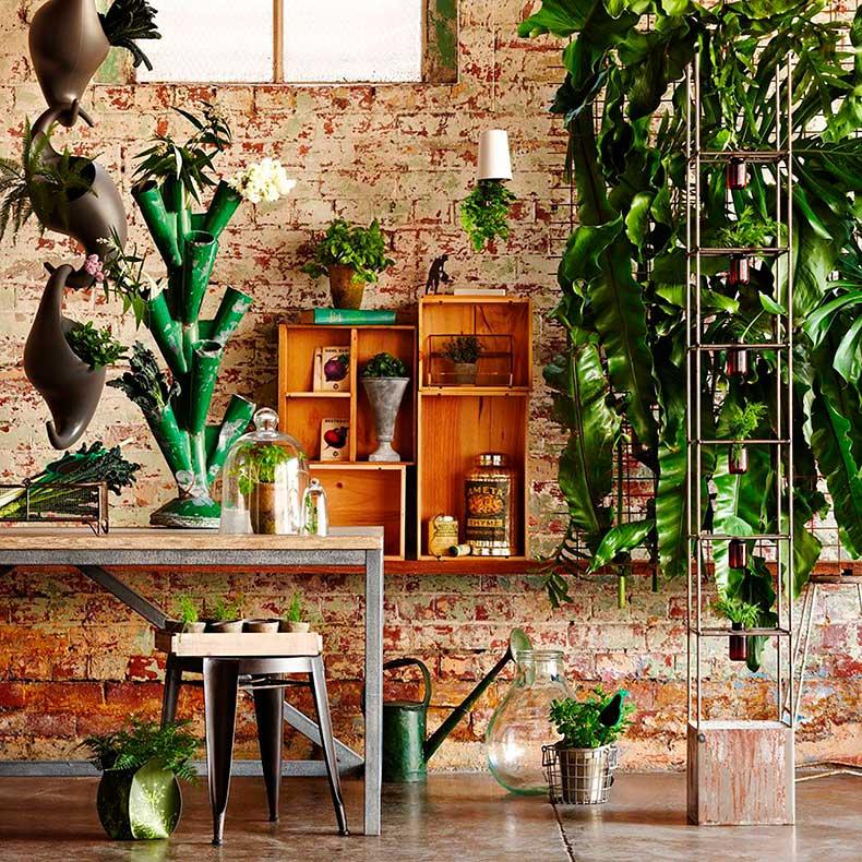 Indoor_jungle