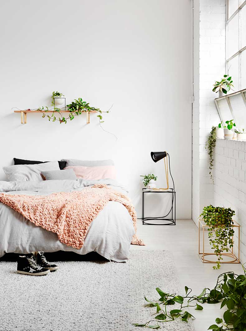 White_bedroom_plants