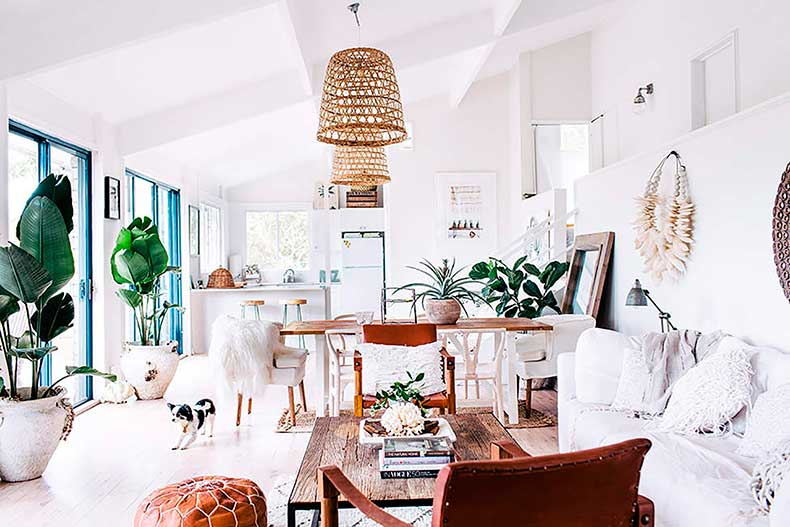 White_living_room_house_plants