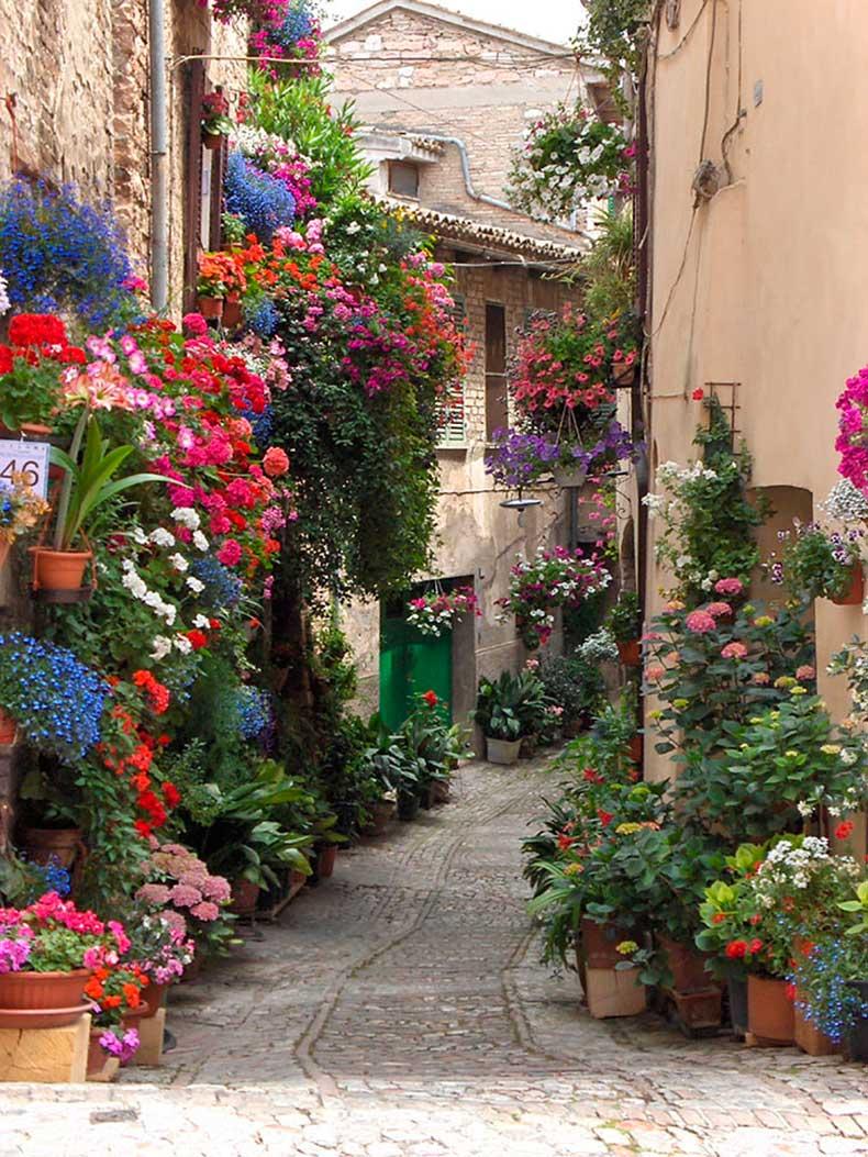 12.-Spello-Italy