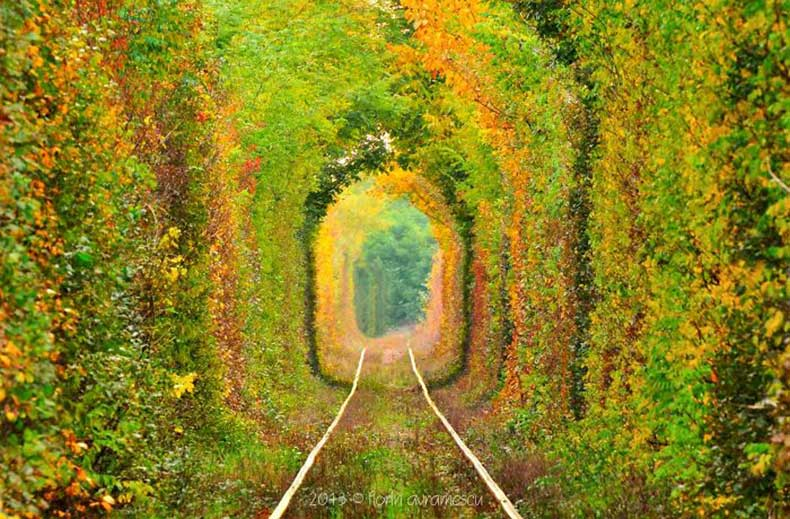 16.-The-Tunnel-of-Love-Romania