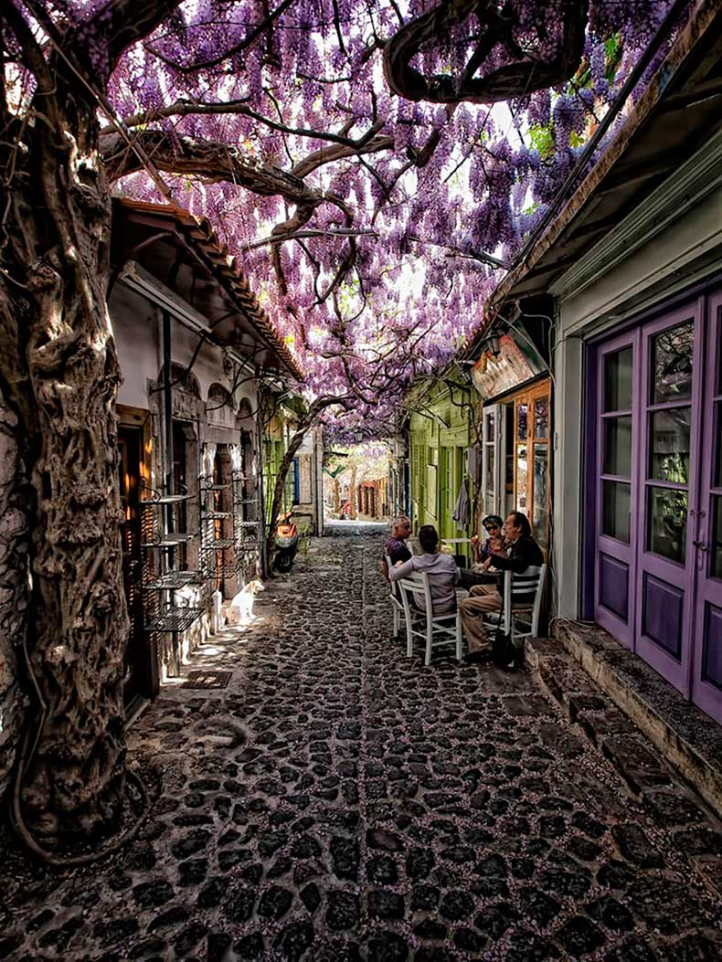 19.-Molywos-Greece