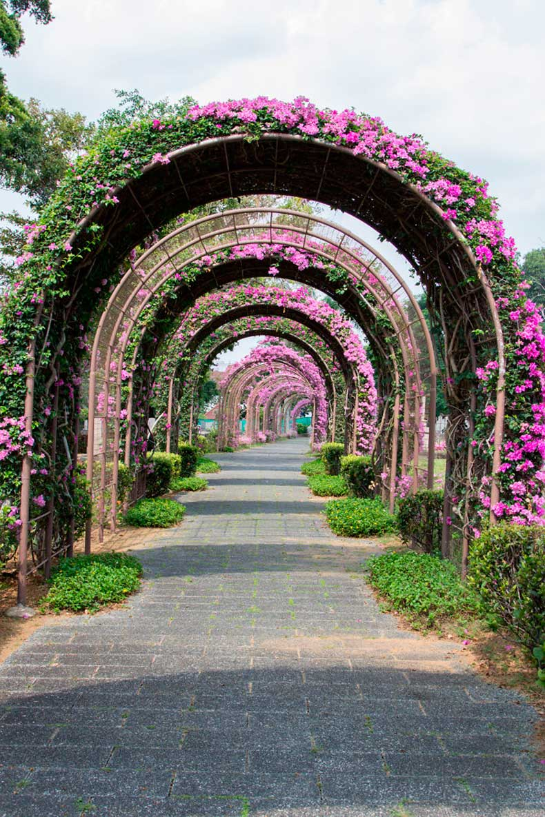 4.-Singapore