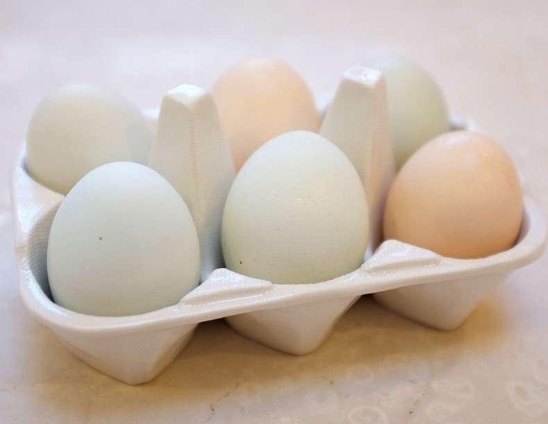 8bd19d9b_eggs.xxxlarge