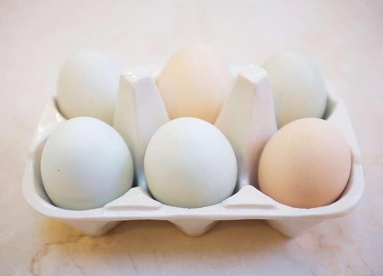 8e2777a4c2954b7d_eggs-main.xxxlarge