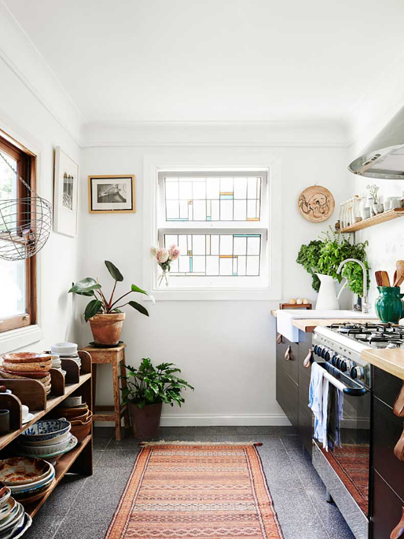 how-to-pick-the-perfect-house-plant-the-everygirl-6
