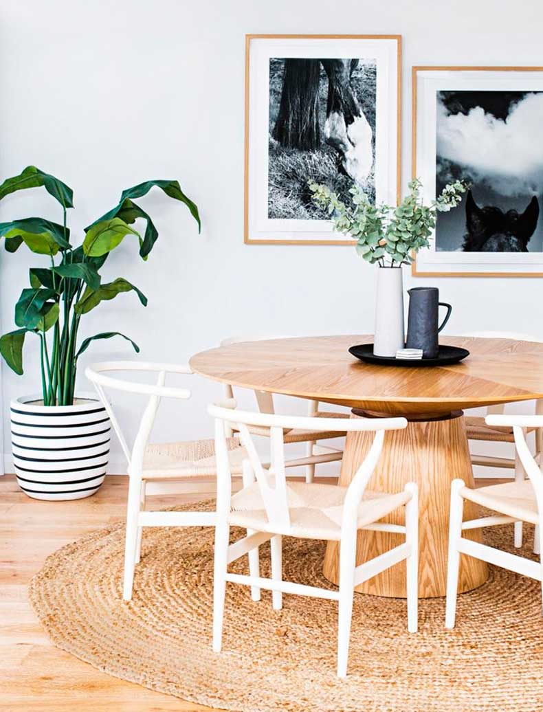 how-to-pick-the-perfect-house-plant-the-everygirl