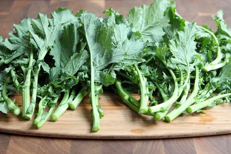 4bc33a8e2cafaa37_broccoli-rabe-xxxlarge_2x